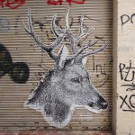 deansunshine_landofsunshine_melbourne_streetart_graffiti_paste ups 19 1