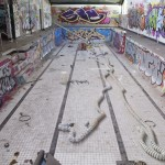 deansunshine_landofsunshine_melbourne_streetart_graffiti abando gym 1