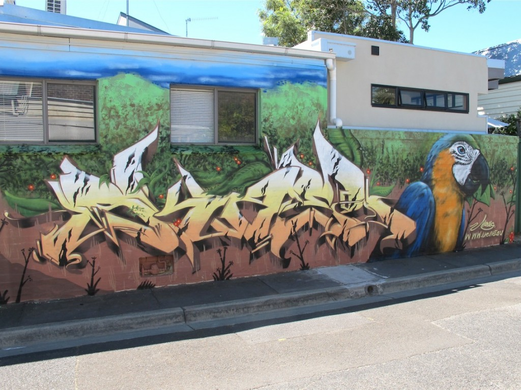 deansunshine_landofsunshine_melbourne_streetart_graffiti_bailer camscale 6