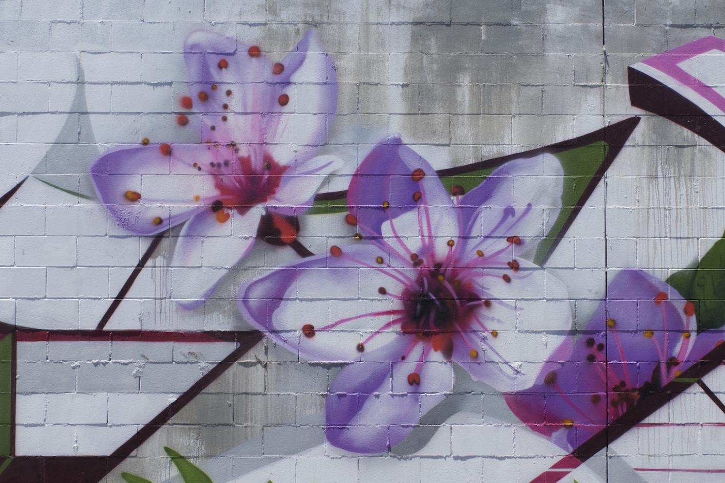 deansunshine_landofsunshine_melbourne_streetart_graffiti_ DVATE going large melb 4