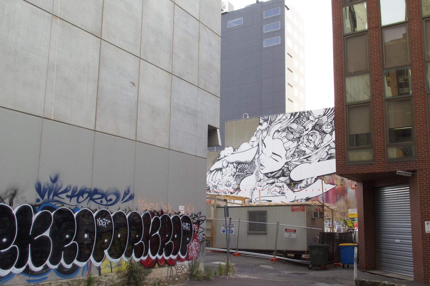 deansunshine_landofsunshine_melbourne_streetart_graffiti_ sofles going large melb 4