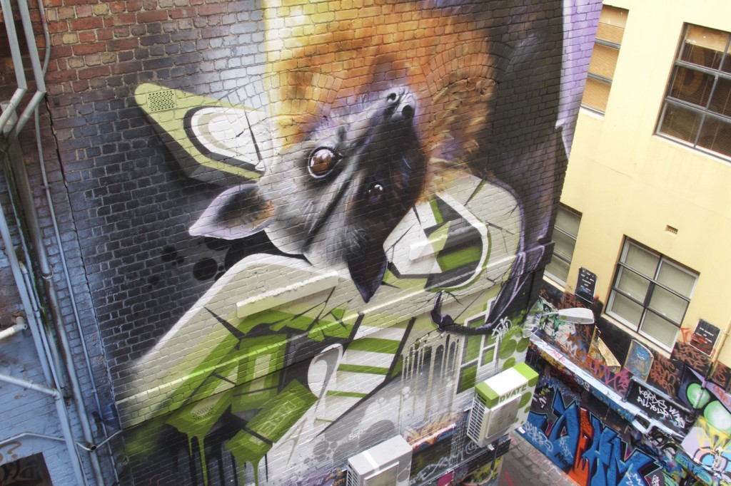 deansunshine_landofsunshine_melbourne_streetart_graffiti_invurt top ten 46 7. Dvate