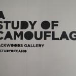 deansunshine_landofsunshine_melbourne_streetart_graffiti_study_of_camo 1