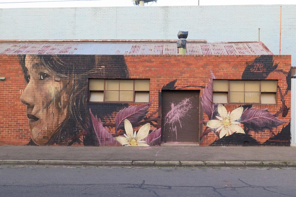 deansunshine_landofsunshine_melbourne_streetart_graffiti_Camscale thornbury mural 2