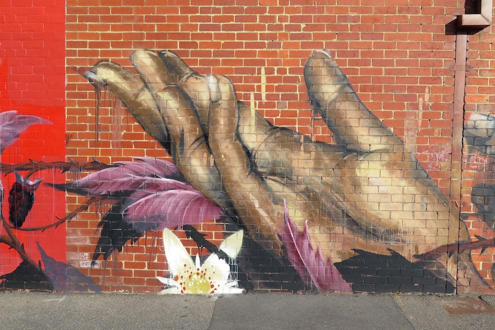 deansunshine_landofsunshine_melbourne_streetart_graffiti_Camscale thornbury mural 5