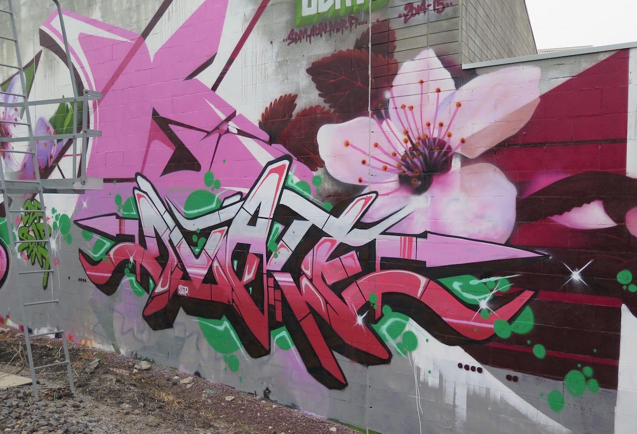 deansunshine_landofsunshine_melbourne_streetart_graffiti_DVATE wall 2