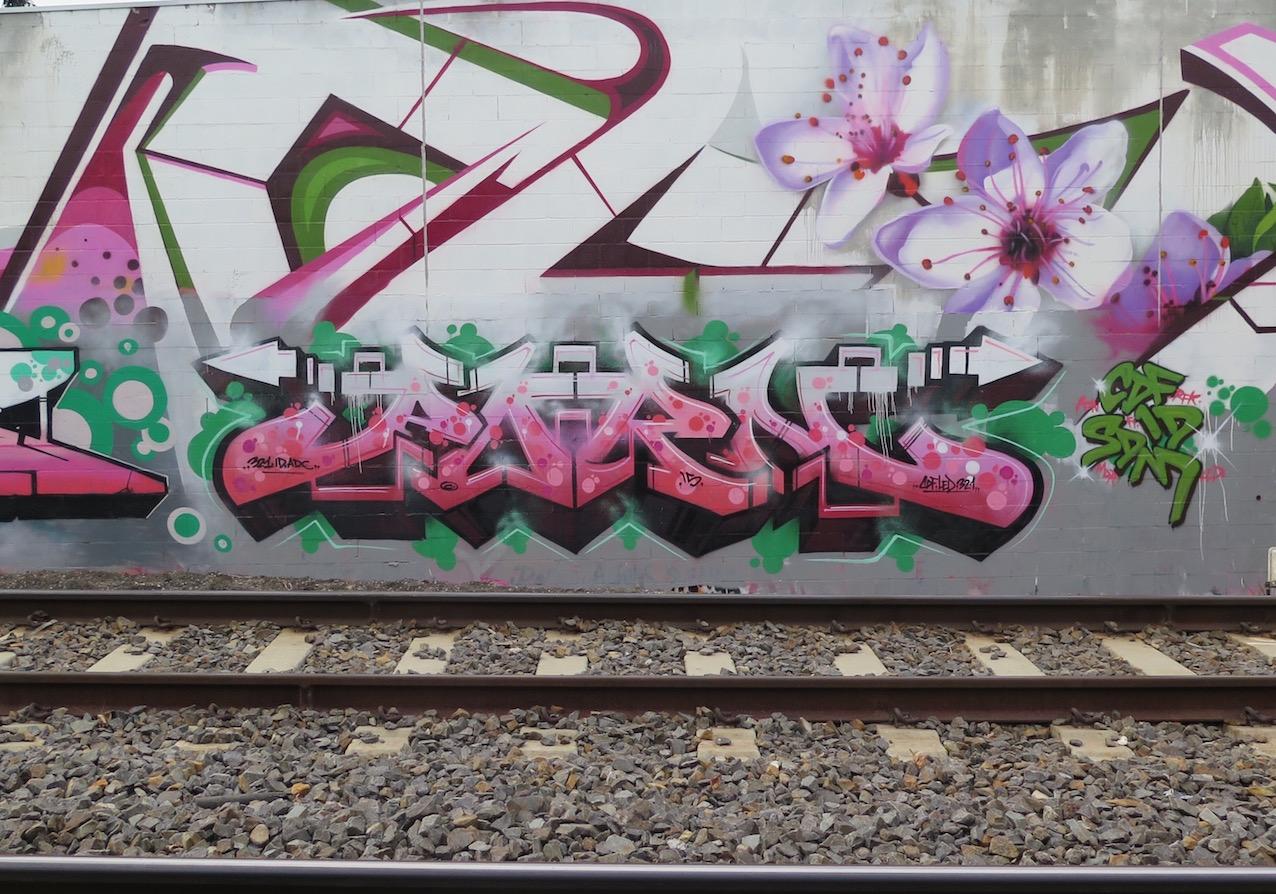 deansunshine_landofsunshine_melbourne_streetart_graffiti_DVATE wall 3