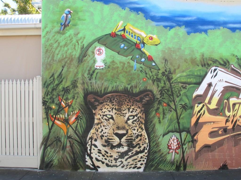 deansunshine_landofsunshine_melbourne_streetart_graffiti_bailer camscale 4