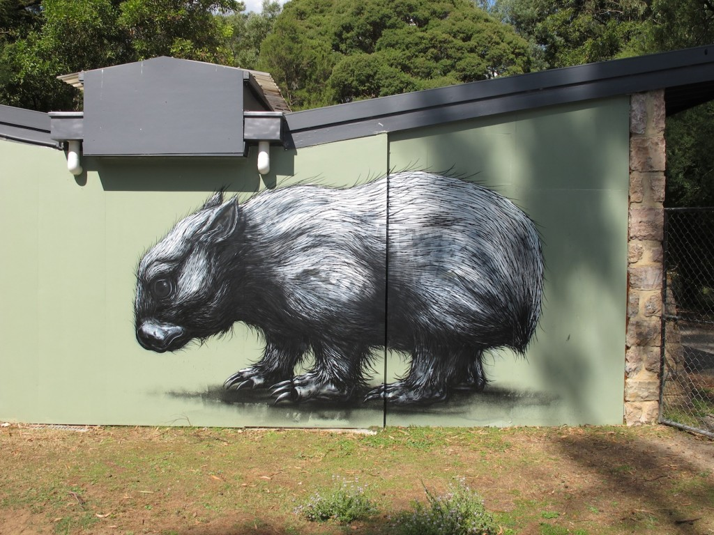 deansunshine_landofsunshine_melbourne_streetart_graffiti_ROA melb 2012 2
