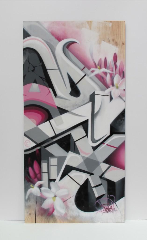 deansunshine_landofsunshine_melbourne_streetart_graffiti_MSFW14 project 3 DVATE