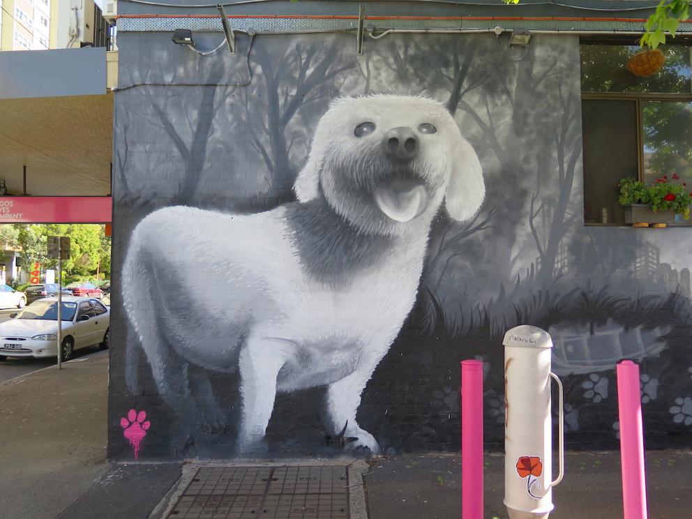 deansunshine_landofsunshine_melbourne_streetart_graffiti_ DVATE PAWN SIGS fitzroy 2