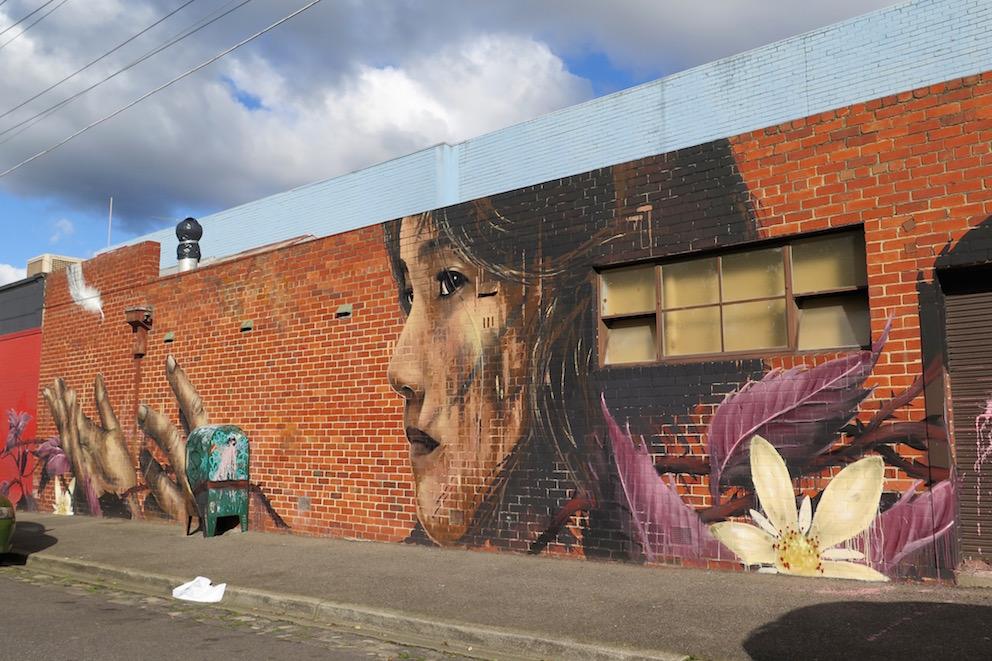 deansunshine_landofsunshine_melbourne_streetart_graffiti_Camscale thornbury mural 1