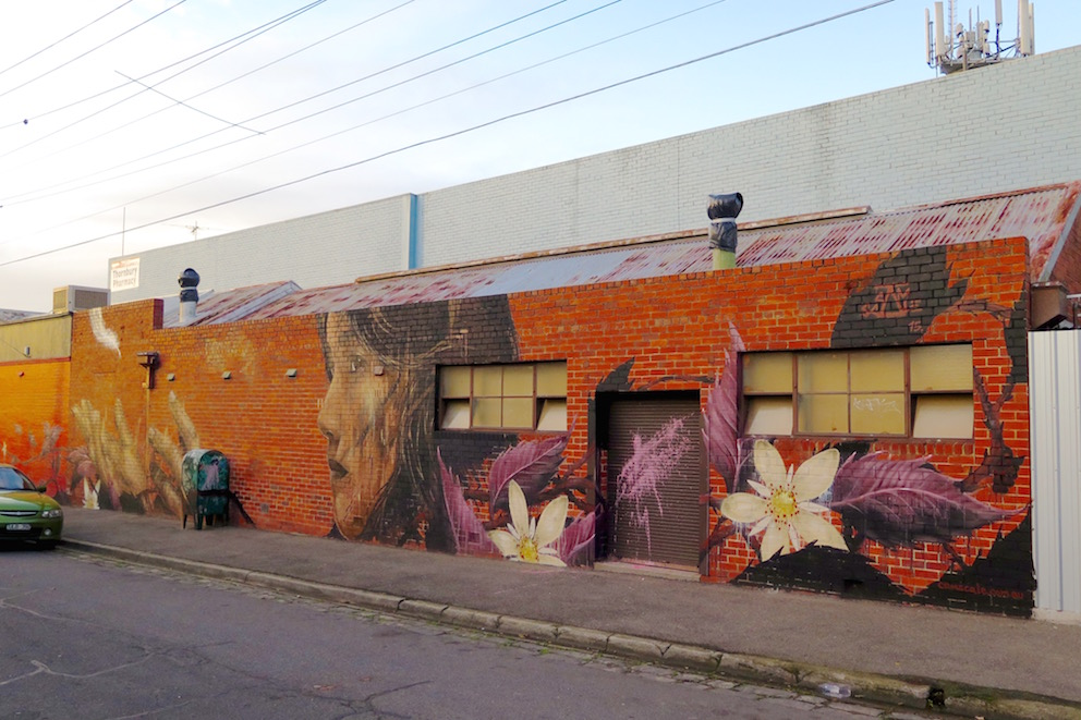 deansunshine_landofsunshine_melbourne_streetart_graffiti_Camscale thornbury mural 10