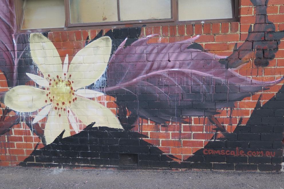 deansunshine_landofsunshine_melbourne_streetart_graffiti_Camscale thornbury mural 3