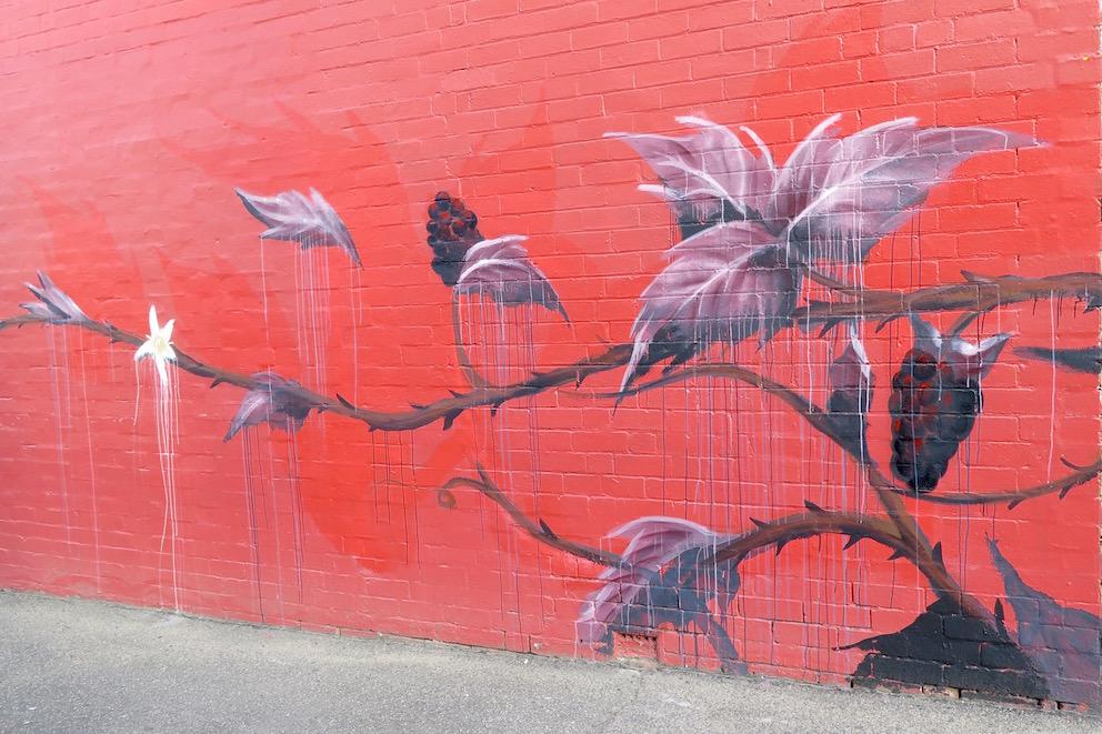deansunshine_landofsunshine_melbourne_streetart_graffiti_Camscale thornbury mural 6