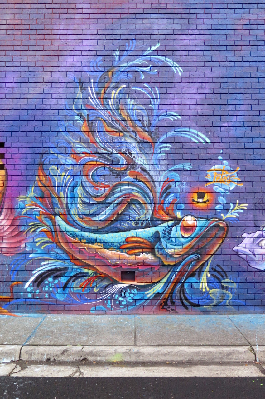 deansunshine_landofsunshine_melbourne_streetart_graffiti_fishy richmond 3