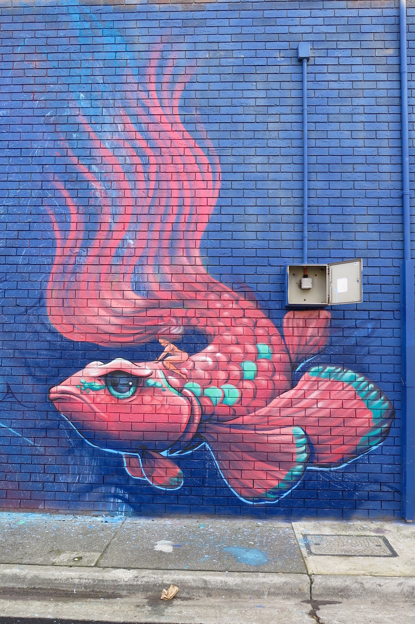 deansunshine_landofsunshine_melbourne_streetart_graffiti_fishy richmond 5