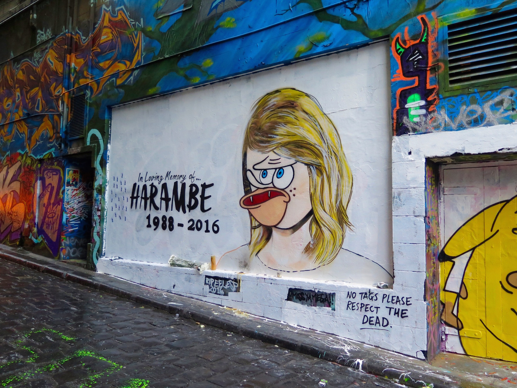 deansunshine_landofsunshine_melbourne_streetart_graffiti_Lush celebrity hosier lane 2 Harambe 2